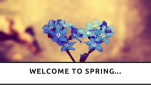 Welcome to Spring, RedRite, Leeds, Virtual Assistant