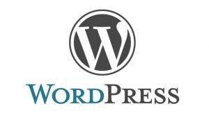 Wordpress Website build and Maintenance Packages